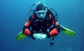 Port-Fréjus plongée