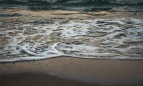 Immobilière de la plage
